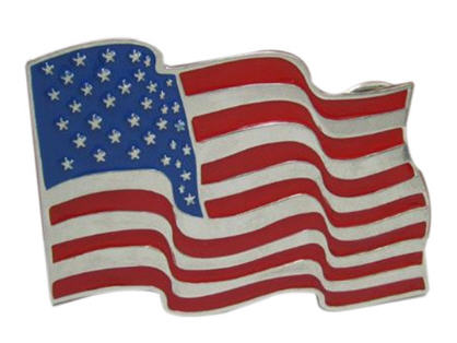 BUCKLE United States USA Vlag Goud