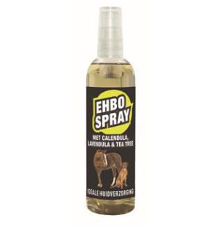EHBO spray 100ml